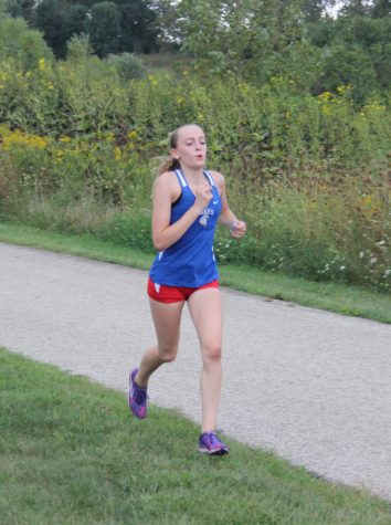 Camryn Jones: IHSA Sectionals meet
