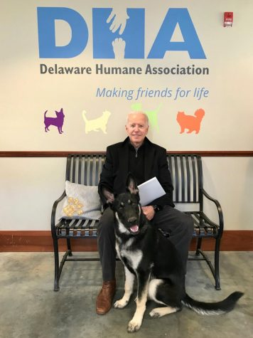 Stephanie Gomez/Delaware Humane Association, via Associated Press